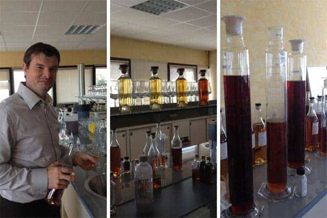 Cognac Hardy Lab Collage