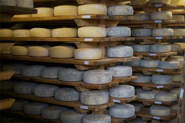 Azienda Agricola Borg da Ocjs - Cheese room