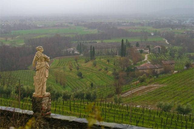 Friuli Scenic Vineyard Views
