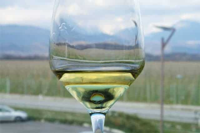 Friuli wine with mountain backdrop