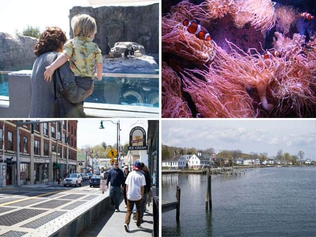 Mystic CT Aquarium and Town Views