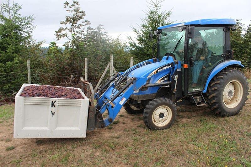 Kramer Oenocamp_hauling grapes away