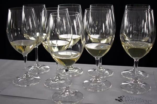 Tasting-Flight-at-the-Oregon-Chardonnay-Symposium
