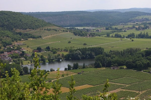Viewing Cahors Vineyards from Above