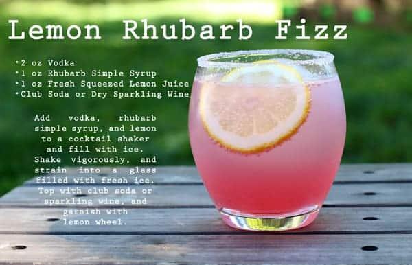 Cocktail Week: Lemon Rhubarb Fizz Cocktail & Rolling River Spirits Vodka
