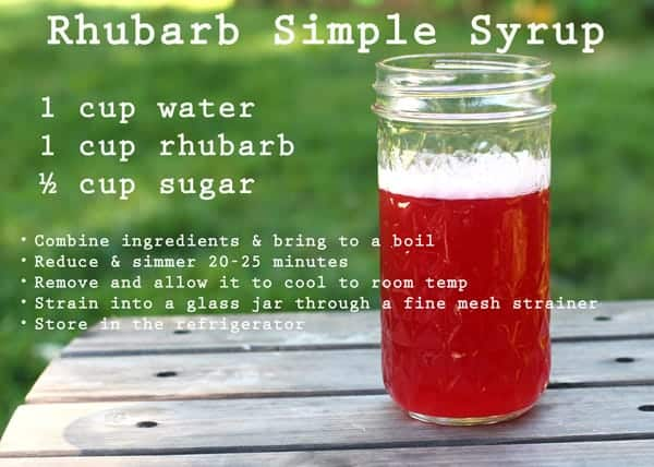 Cocktails Week:  Simple Simple Syrup Recipes