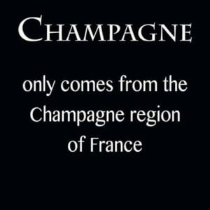 "Text description explaining ""Champagne only comes from France"""