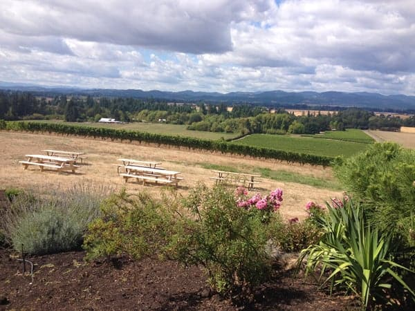 Views from Anne Amie Vineyards