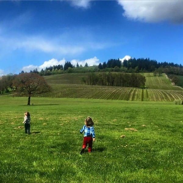 Children, Frolicking in the Vineyards