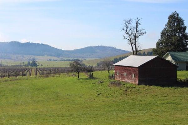Umpqua Valley view from MarshAnne Vineyards
