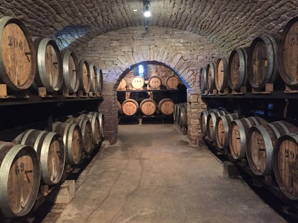Cellars at Domaine Berthet-Bondet