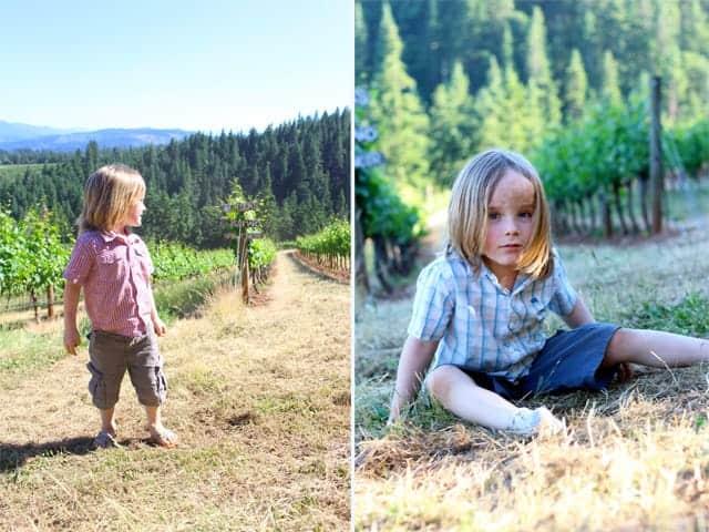 Kids in the Vineyard