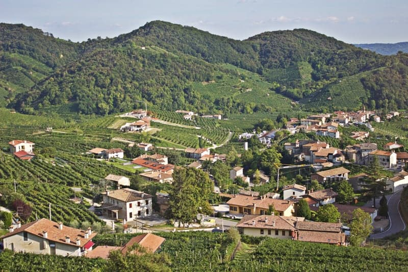 The hills in the Conegliano and Valdobbiadene region of Veneto