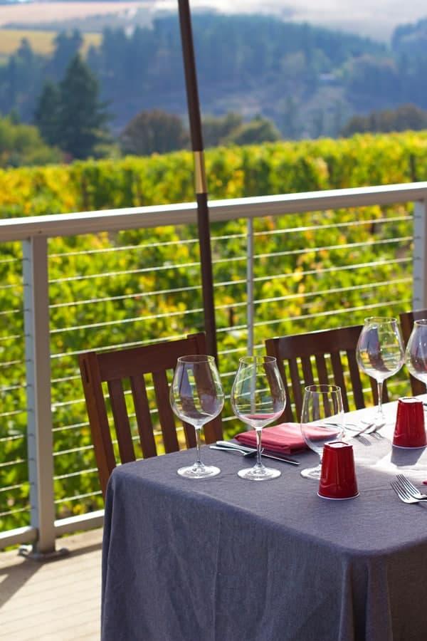 View from Raptor Ridge Winery
