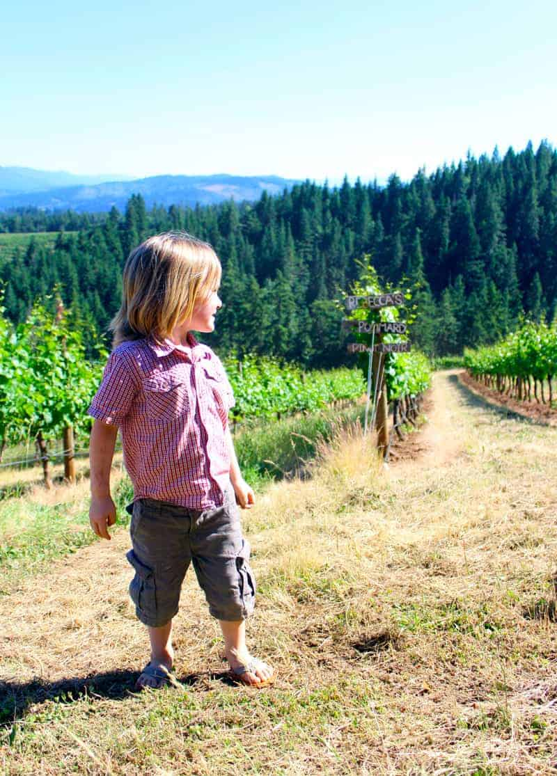 Future Vineyard Manager in Training? Or just appreciating a sunny day in the vineyard?