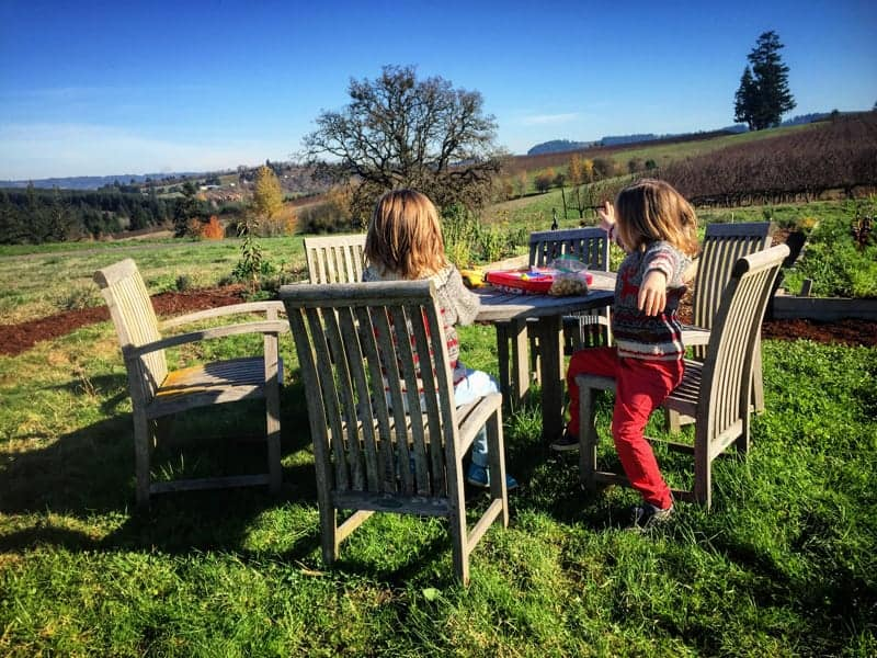 Lunch-in-the-vineyard-with-kids