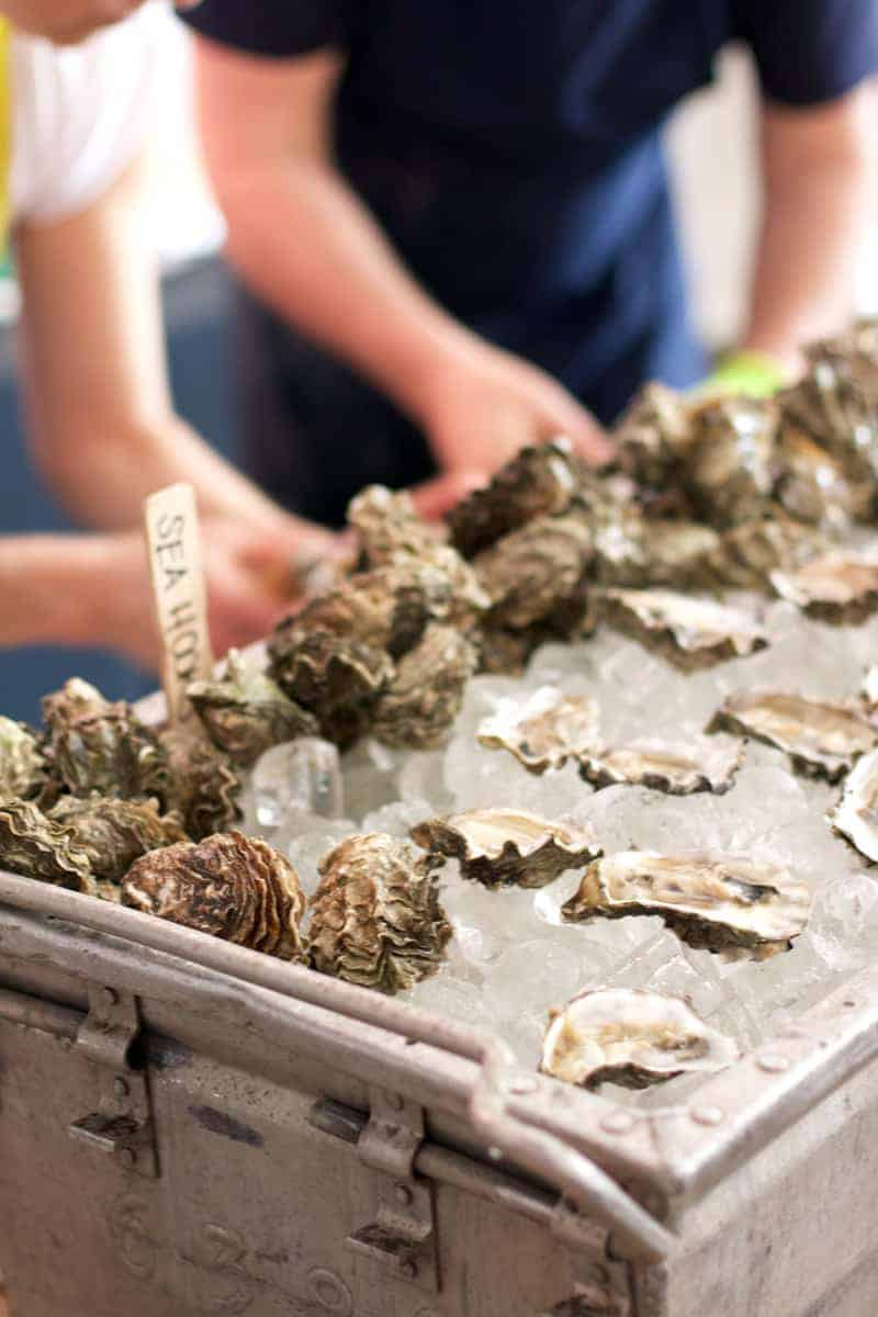 Oysters from Olympia Oyster Bar