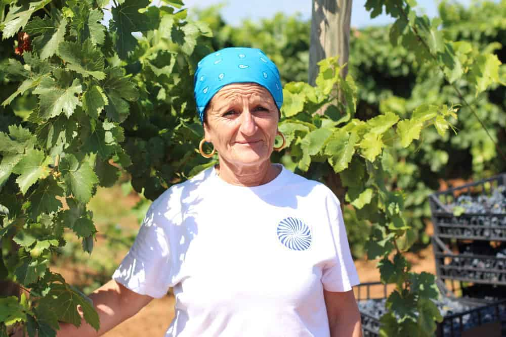 Womens-Harvest-in-Puglia