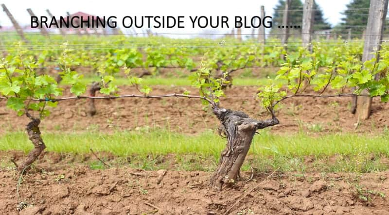 Branching Outside Your Blog to Increase Engagement and Audience