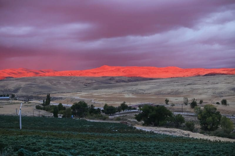 Sunset at 3 Horse Ranch Vineyard, Idaho Wine Country