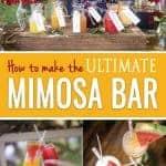 Mimosa Bar recipes and ideas