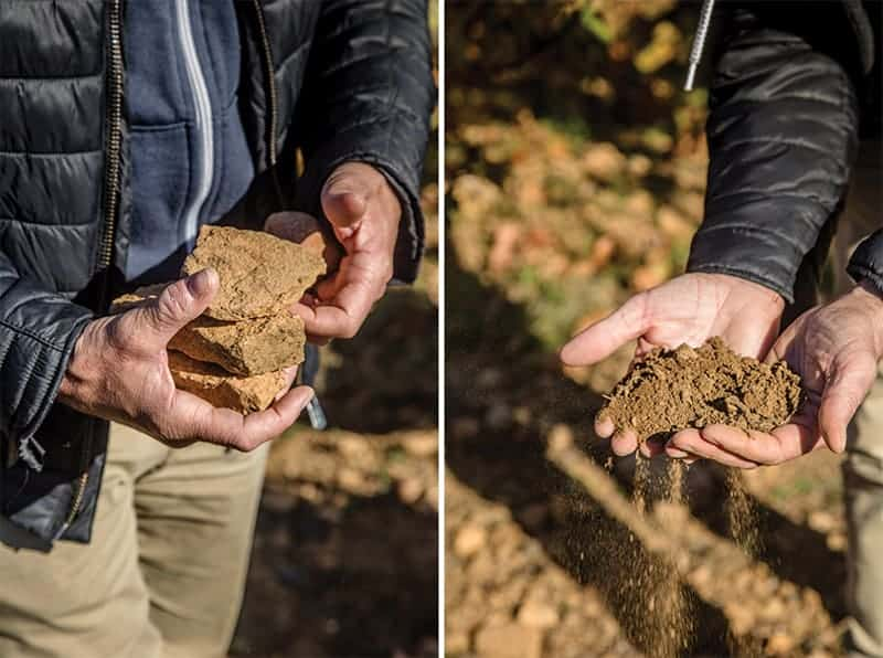 Soil samples in Burgundy France