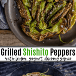 grilled shishito peppers pinterest image