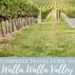 vineyard and wine glasses full of white wine with pinterest text - travel guide to walla walla valley