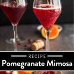 Pomegranate Mimosa Pin