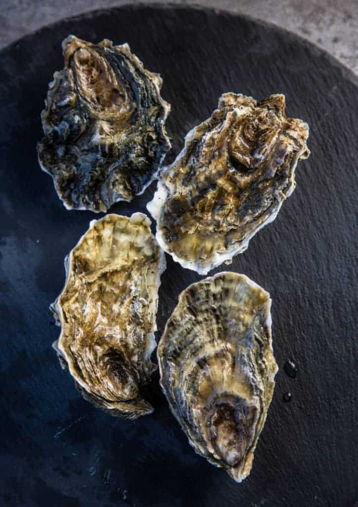 Whole shelled raw oysters