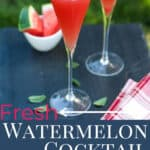 watermelon cocktail pin image with text