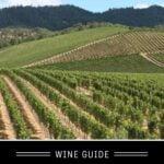 Merlot Wine Guide pin