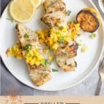 Grilled Halibut Pin