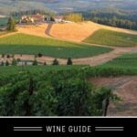 Riesling Wine Guide pin