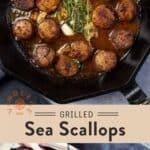 Grilled Sea Scallops Pin