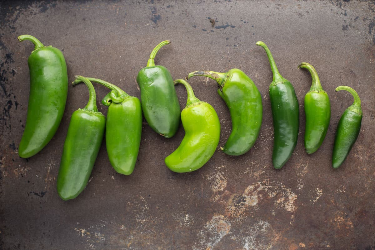 Size gradient of jalapeno poppers.
