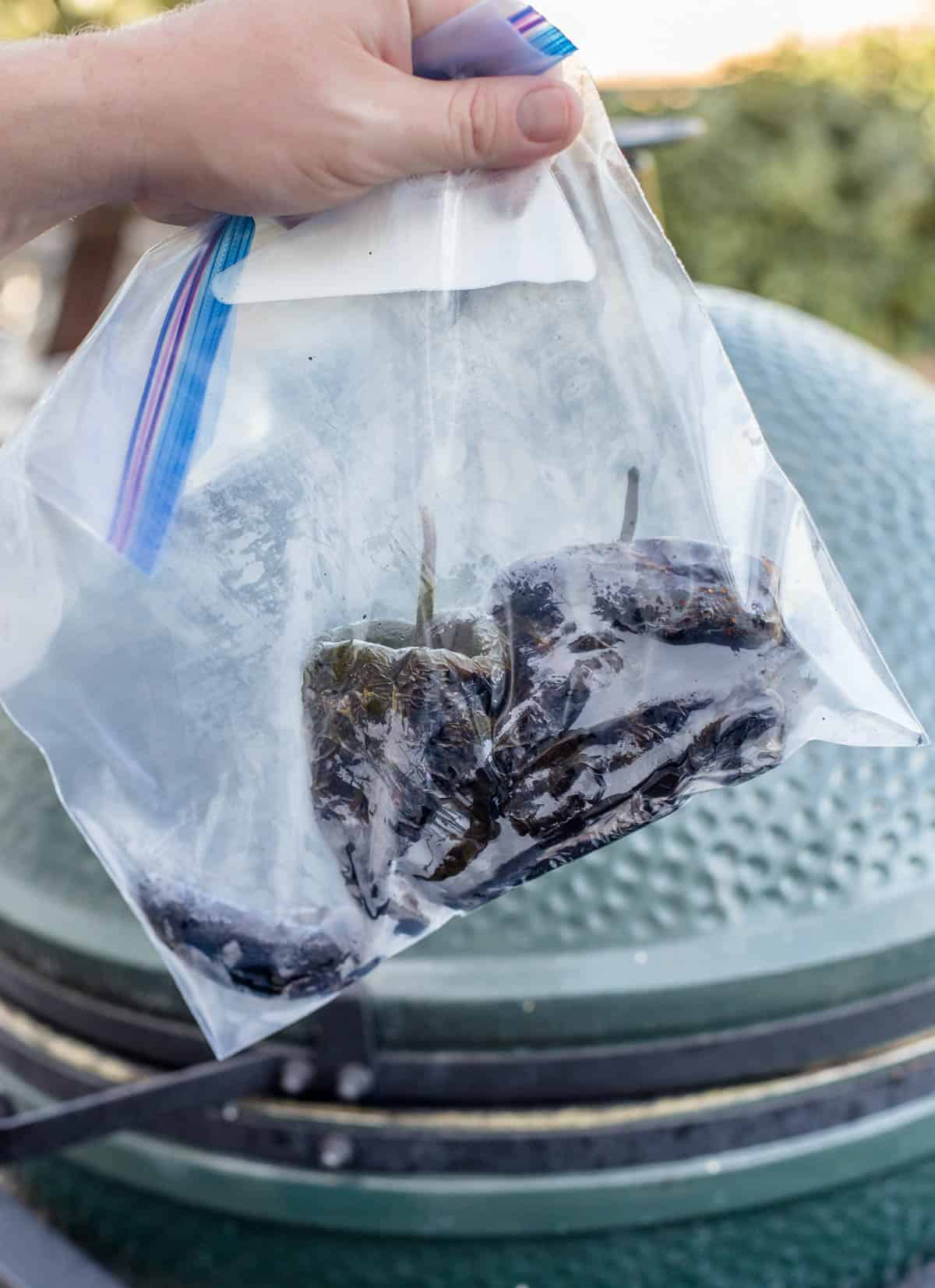 Roasted poblano peppers in a plastic baggie before peeling skin.