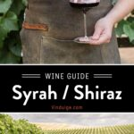 Syrah Wine Guide Pin
