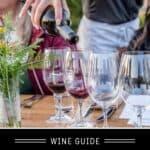 Cab franc Wine guide pin