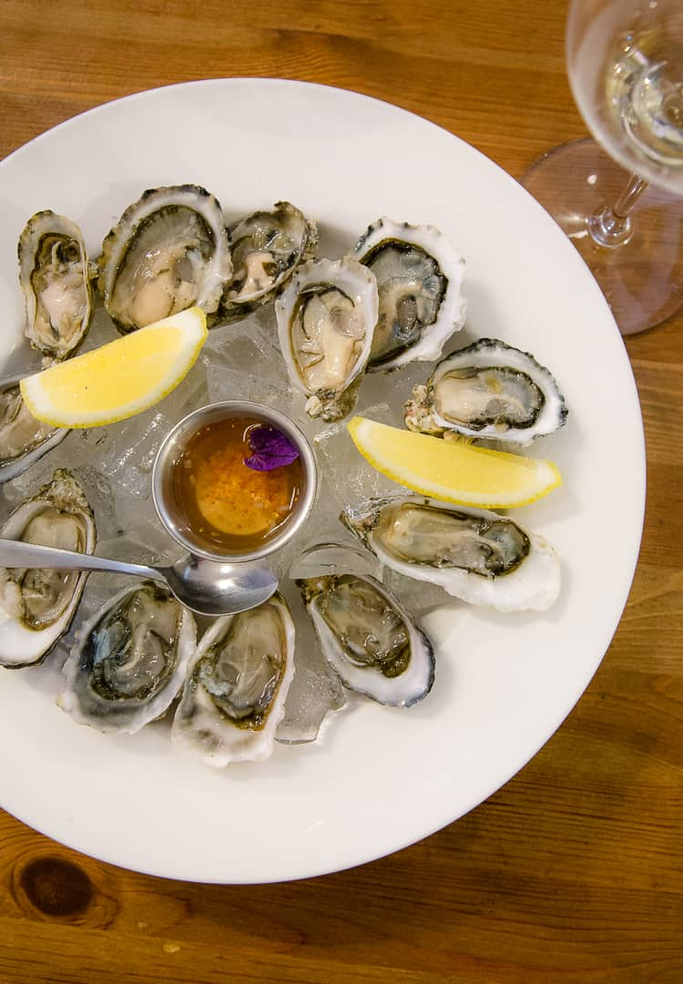 Oysters on a platter with a glass of Sauvignon Blanc wine
