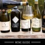 Pinot Grigio Wine Guide Pin