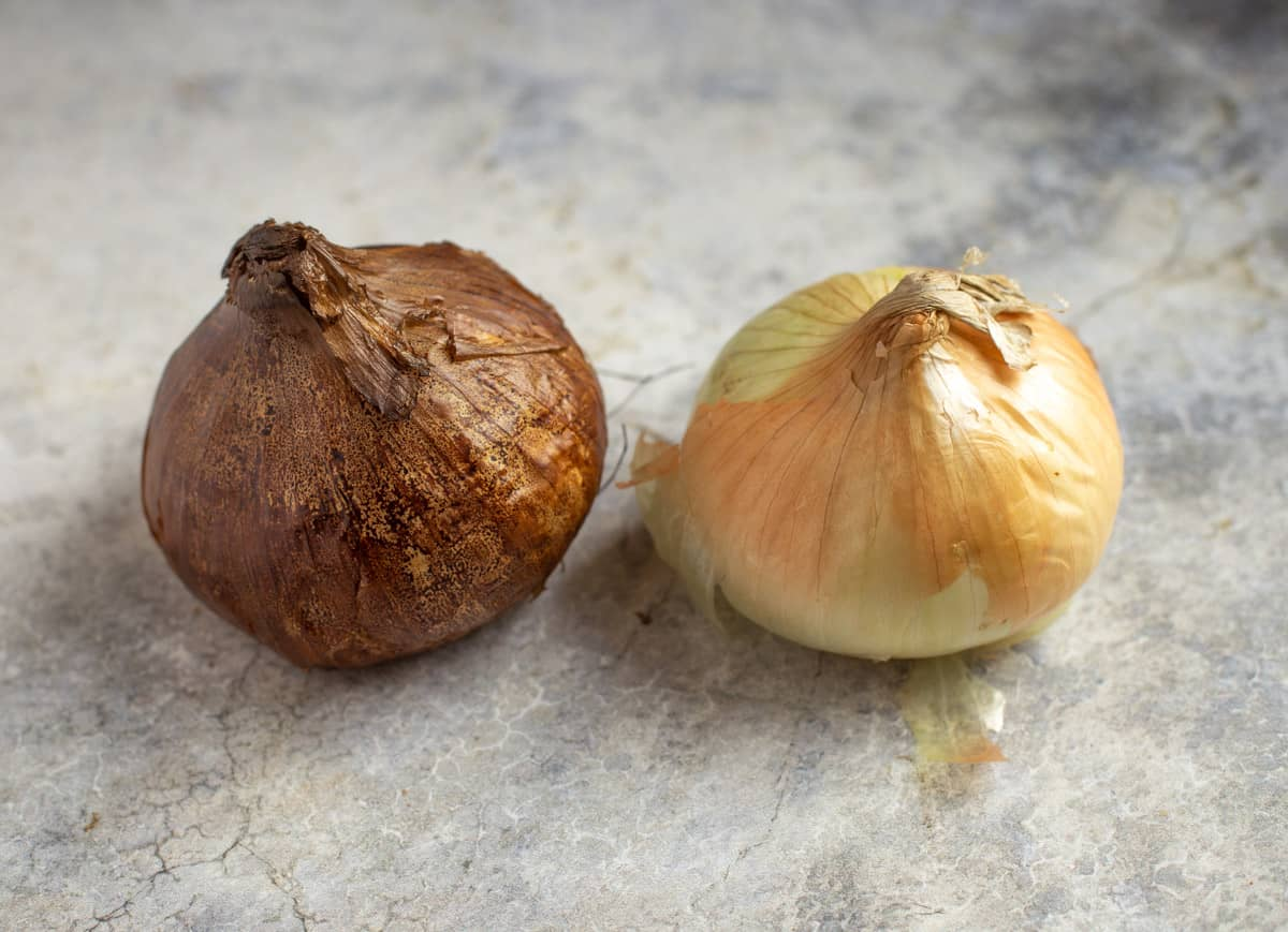a smoked onion on a table next to a raw onion
