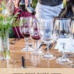 Grenache Wine Guide Pin